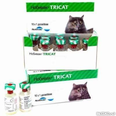 вакцина нобивак трикет трио для кошек инструкция - фото 2